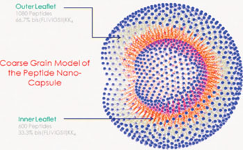 Image: John Tomich and his research lab team at Kansas State University combined two related sequences of amino acids to form a very small, hollow nanocapsule similar to a bubble (Photo courtesy of Kansas State University).