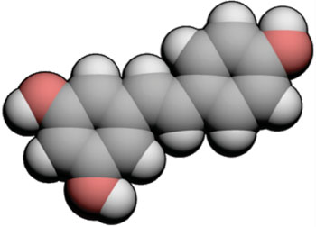 Image: Three-dimensional molecular space-fill model of resveratrol (Photo courtesy of Wikimedia Commons).