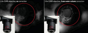 Image: Studying Vascular Development using Zebrafish (eye). Left: without correction. Right: optics adapted to the refractive index of the water column by using the correction ring of the Leica Planapo 2.0x CORR objective (Photo courtesy of Mailin J. Hamm, Angiogenesis Laboratory, University of Muenster, Germany).